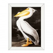 Постер Eichholtz 108258 Giles (Белый пеликан)