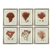 Постеры Eichholtz 111741 Antique Red Corals
