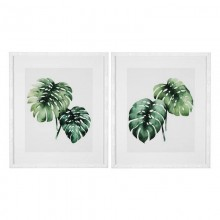 Постеры Eichholtz 111742 Tropical Plants