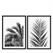 Постеры Eichholtz 112195 EC274 Palm Leaves (2 шт.)